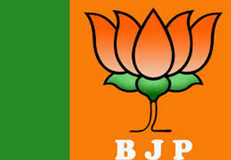 भाजपा युवा मोर्चा प्रदेश कार्यसमिति की घोषणा...