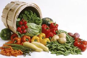 organic-vegetablef