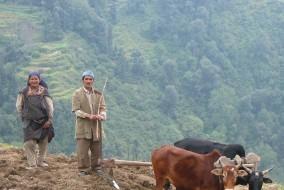 प्रदेश सरकार ने कृषक एवं खेतीहर मजदूरों के लिए शुरू की जीवन सुरक्षा योजना