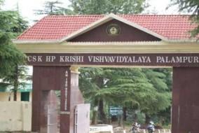 कृषि विश्वविद्यालय पालमपुर में भरे जाएंगे शिक्षकों के 35 पद