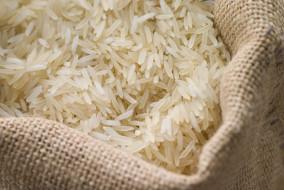 बासमती चावल के निर्यात पर पाबंदी लगाने के किसी प्रस्ताव पर विचार भी नहीं