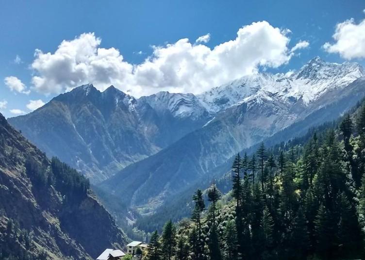 """""""हिमाचल"""" होगा ओर भी सुंदर जब सब मिलकर करेंगे """"पर्यावरण का संरक्षण"""" छायाकार: मीना कौंडल"""