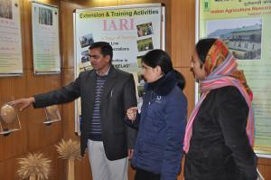 भारतीय कृषि अनुसंधान संस्थान क्षेत्रीय केंद्र उद्यान अमरतारा एवं क्षेत्रीय केंद्र गेहूं टूटीकंडी का समायोजन 1अप्रैल 2००5 को किया गया