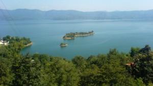 गोबिन्द सागर झील