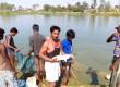 राज्य सरकार का शिमला, चंबा और कांगड़ा में ट्राउट मछली के आउटलेट खोलने का फैसला