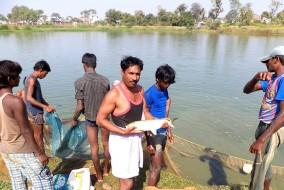 प्रदेश के जलाश्यों में 31 जुलाई तक मछली पकड़ने पर रोक