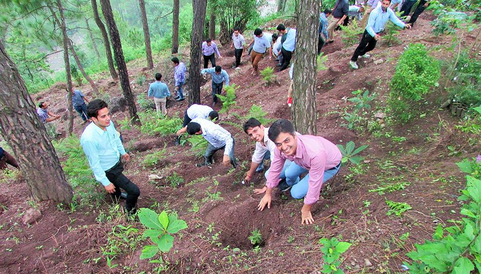 प्रदेश में वन क्षेत्र को 30 प्रतिशत तक बढ़ाने का लक्ष्य
