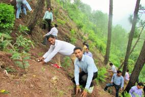 शूलिनी विश्वविद्यालय में डॉ. वाईएस परमार की याद में वृक्षारोपण अभियान का शुभारंभ