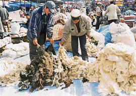 यह भीतरी हिमालय में सबसे बड़ा अन्तर्राष्ट्रीय व्यापारिक मेला