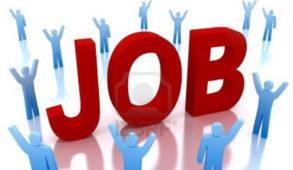 जिला रोजगार कार्यालय चंबा में 1 और 3 अप्रैल को होगा कैंपस इंटरव्यू का आयोजन