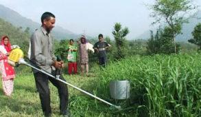 कृषि निदेशक का किसानों से आग्रह: कृषि योजनाओं का लाभ लेने को अपने निकटतम कृषि अधिकारी से करें सम्पर्क