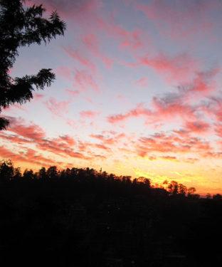 नूरपुर हादसा : घरों में सिर्फ उदासी, मायूसी और दिल को चीरकर रख देने वाली खामोशी