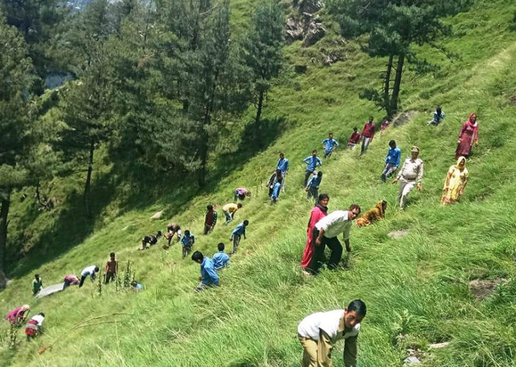 प्रदेश में रोपे गए तीन दिनों में 15 लाख पौधे : वनमंत्री