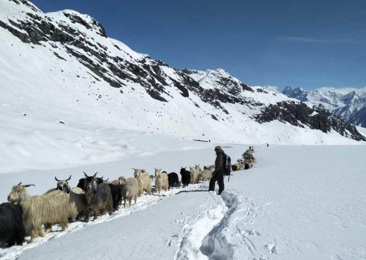 किन्नौर और लाहौल स्पीति में वीरवार को बारिश और बर्फबारी के आसार