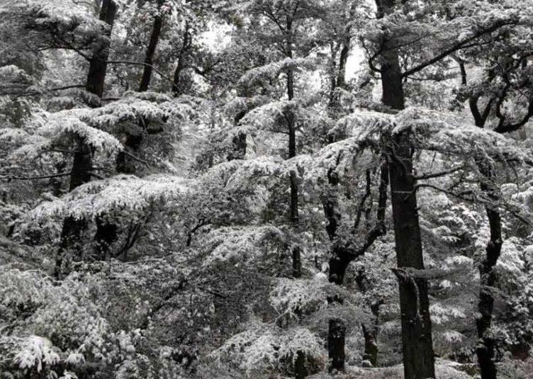 हिमाचल: मौसम में बदलाव आने के आसार