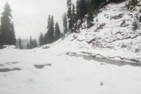 बर्फ पर गाड़ी स्किड होने से दुर्घटनाग्रस्त, 2 लोगों की मौके पर मौत तथा 1 गंभीर रूप से घायल