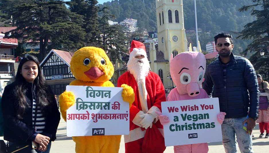 क्रिसमस के मौके पर चिकन व पिग के साथ निकाली जागरूकता रैली, दिया शाकाहारी बनने का संदेश