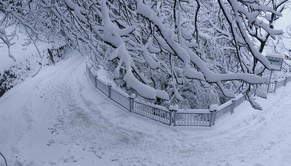 हिमाचल : हिमपात के चलते प्रदेश शीत लहर की चपेट में, 23 जनवरी से मौसम साफ के रहने के आसार