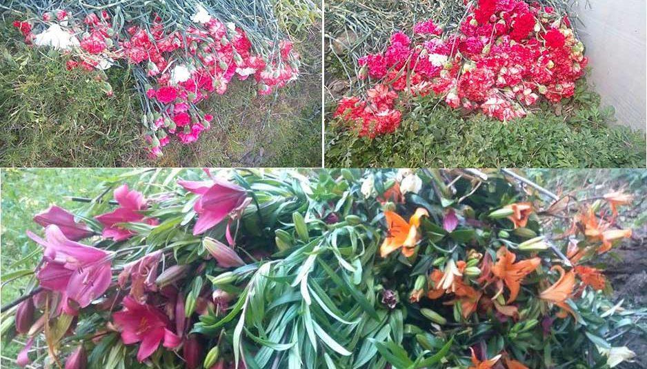 किसानों द्वारा पॉलीहाउस में लगाये गए लाखों रुपये के फूल सड़कों पर