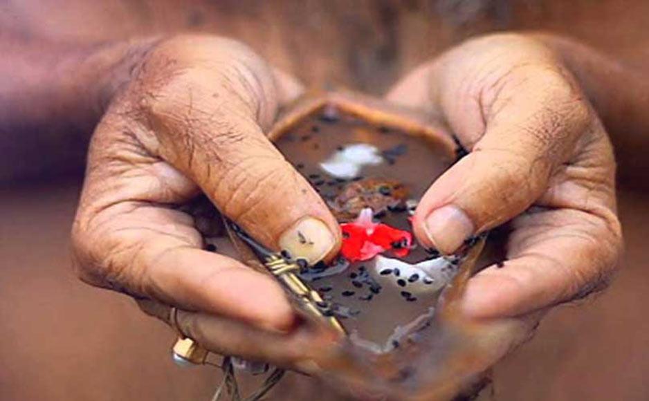पितृ पक्ष तिथि, नियम, विधि, भोजन और महत्व श्राद्ध में इन बातों का रखें विशेष ध्यान: आचार्य महिंद्र कृष्ण शर्मा