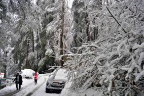 हिमाचल में बारिश-बर्फबारी की संभावना...