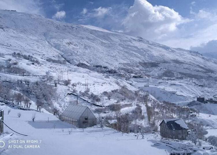हिमाचल: प्रदेश में एक बार फिर बारिश-बर्फबारी के आसार